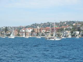 Yachts galore