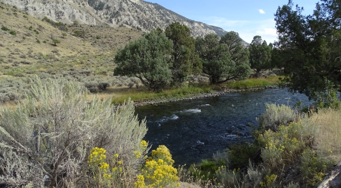 Missoula to Yellowstone – 280 miles plus a good few more in the Park